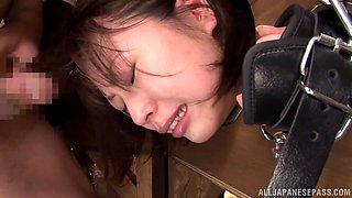Naughty Asian teens Ai Uehara, Ami Tokita and friend in the stockade
