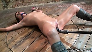 Shaved slave orgasms after getting toyed