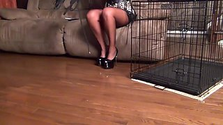 Cat Maze Mistress