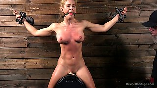 Professional porn actress Cherie Deville gets her pussy punished