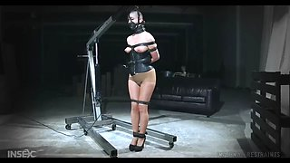 abigail dupree gets her pussy demolished by a dildo in bdsm action
